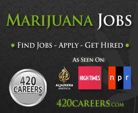 Find Marijuana Jobs
