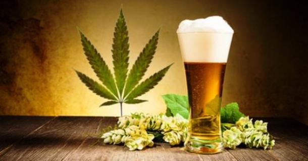 Marijuana is Cheaper Than Beer In Most of U.S.