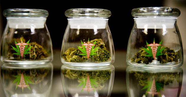5 States That Will Probably Legalize Medical Marijuana Next