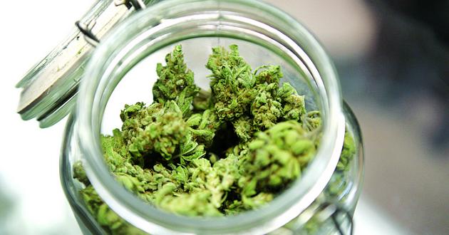 5 Best Marijuana Strains for Anxiety