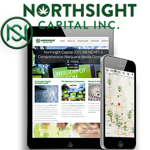 Northsight Capital Appoints Pharmaceutical and Biotech Sales Industry Veteran John B. Hollister as Chief Executive Officer