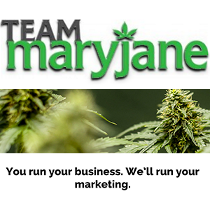 Team Maryjane: Marketing cooperative provides expert help to cannabis companies