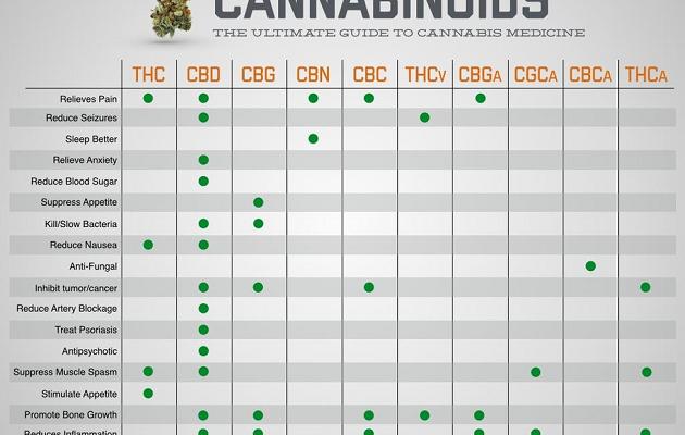 Marijuana Cannabinoids Chart
