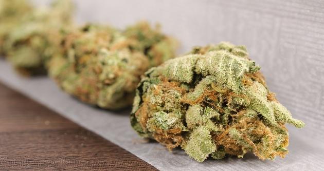 Marijuana Strain Descriptions Improve Dispensary Sales