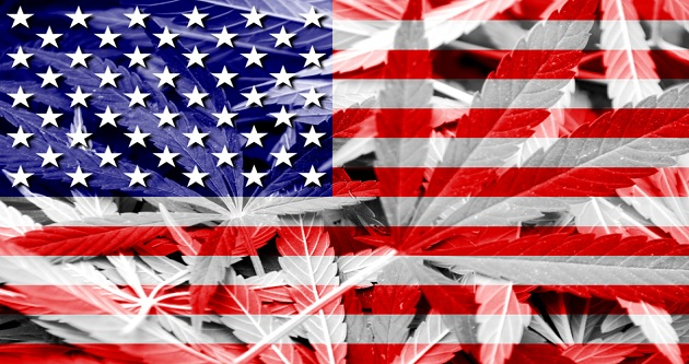 Report Rates America's Medical Marijuana Programs