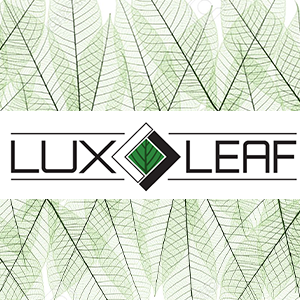 Lux Leaf: Pioneering a Patient-Centered Integrative Care Service Model