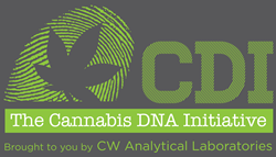 Identify the True Genetic Identity of Cannabis Strains