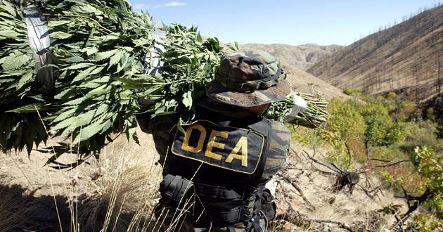 Former DEA Agent Backs Marijuana Legalization