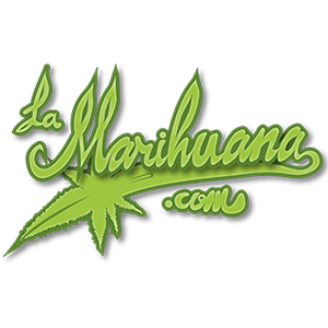 NORTHSIGHT CAPITAL SIGNS OPTION TO ACQUIRE LAMARIHUANA.COM, THE SPANISH COMMUNITY'S PREMIER CANNABIS PORTAL.