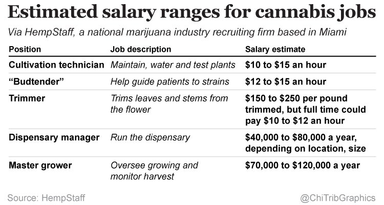 Estimated Salaries for Marijuana Industry Jobs