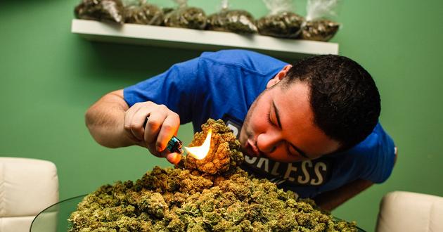 8 Crazy Marijuana Strain Names You Ought to Know