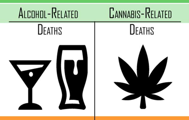 Death Rates: Alcohol Vs. Marijuana