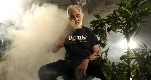 Tommy Chong is Backing Bernie Sanders for President