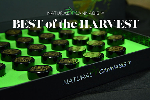 NATURAL CANNABIS COMPANY 2017 BEST OF THE HARVEST COLLECTION NOW AVAILABLE