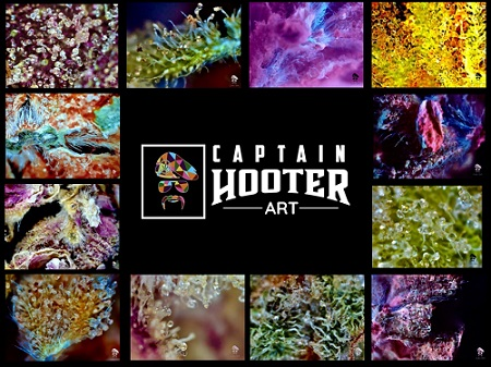 Global Cannabis Connoisseur goes from Wake and Bake to Wake and Create with Launch of Captain Hooter Art
